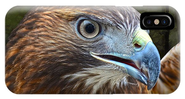 Red-tailed Hawk Portrait IPhone Case