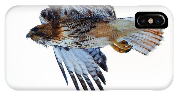Red Tail Hawk iPhone Case - Red-tailed Hawk Winter Flight by Mike Dawson