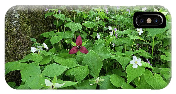 Red Trillium At Center IPhone Case