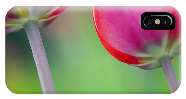 Red Tuliips Phone Case by Silke Magino