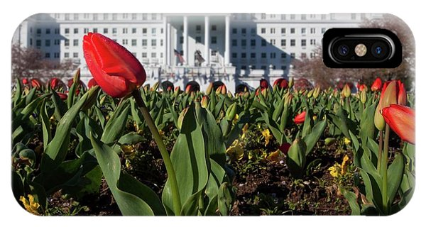 Red Tulip At The Greenbrier IPhone Case