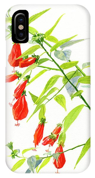 Hibiscus Flower iPhone Case - Red Turks Cap Hibiscus by Sharon Freeman