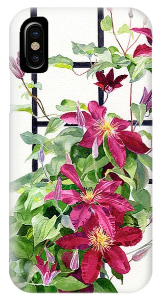 Violet iPhone Case - Red Violet Clematis On A Trellis by Sharon Freeman