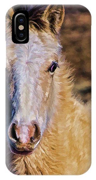 Red Willow Pony IPhone Case