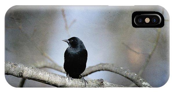Red-winged Blackbird IPhone Case
