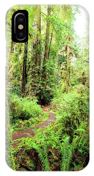 Red Woods Trail IPhone Case