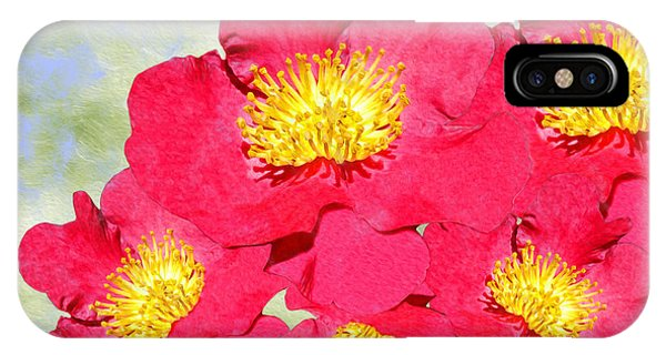 Fall Flowers iPhone Case - Red Yuletide Camellia by Laura D Young