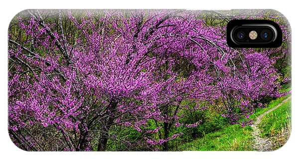 iPhone Case - Redbud And Path by Thomas R Fletcher