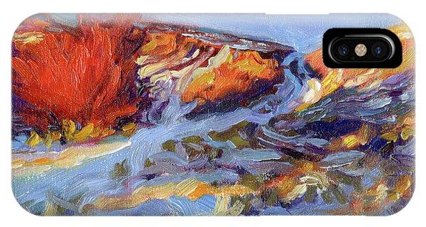 Impressionist iPhone Case - Redbush by Steve Henderson