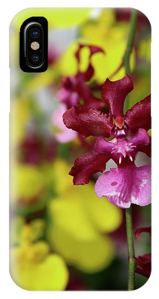 Maroon And Yellow Orchid IPhone Case