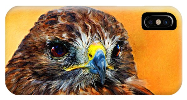 Redtailed Hawk IPhone Case