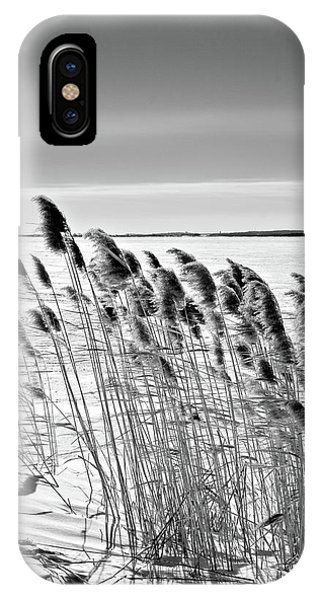 Reeds On A Frozen Lake IPhone Case