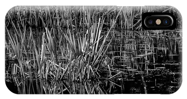 Reeds Reflection  IPhone Case