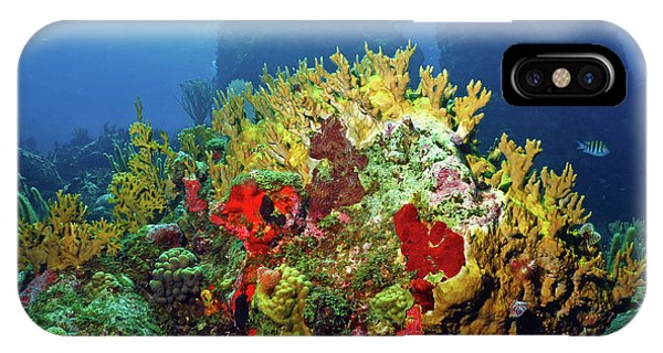 Reef Scene With Divers Bubbles IPhone Case