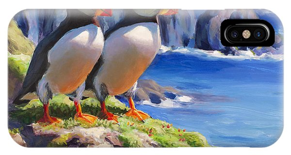 Reflecting - Horned Puffins - Coastal Alaska Landscape IPhone Case