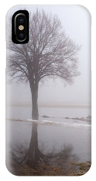 Reflecting Tree IPhone Case