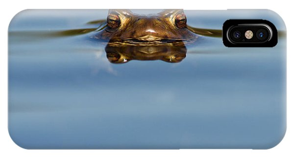 Frogs iPhone Case - Reflections - Toad In A Lake by Roeselien Raimond