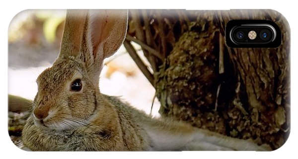 Relaxing Cottontail IPhone Case
