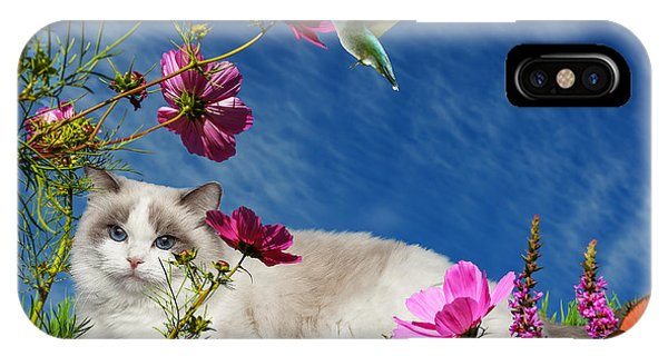 iPhone Case - Relaxing by Cynthia Leaphart