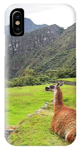 Relaxing Llama In Machu Picchu IPhone Case