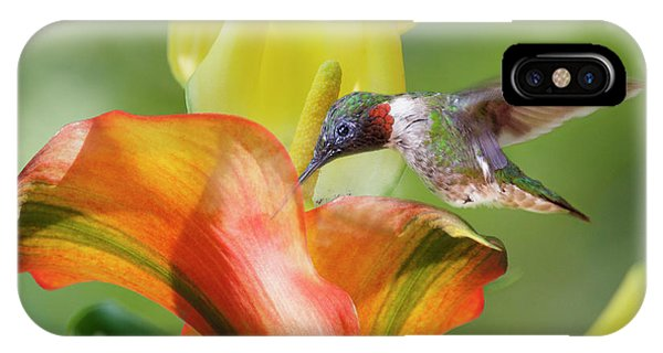 Humming Bird iPhone Case - Remarkable Inspiration  by Betsy Knapp