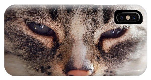 Remi Cat IPhone Case