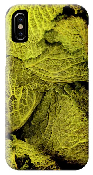 Renaissance Chinese Cabbage IPhone Case