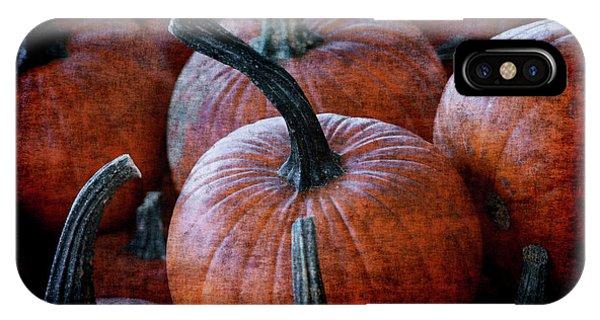 Renaissance Pumpkins IPhone Case