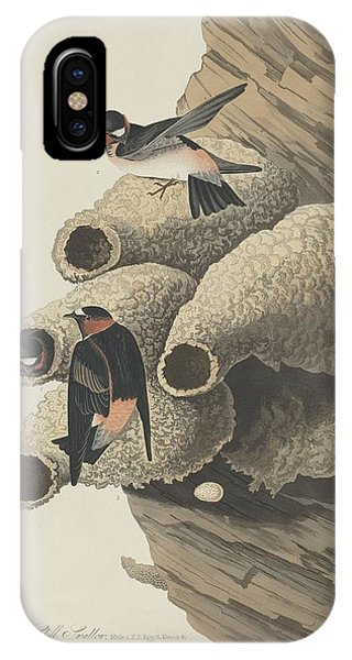 Republican Cliff Swallow IPhone Case