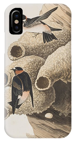 Swallow iPhone Case - Republican Or Cliff Swallow by John James Audubon