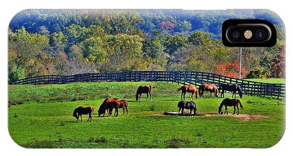 Rescue Horses IPhone Case