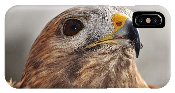 Rescued Hawk IPhone Case