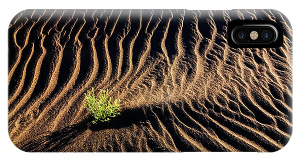 Resilient Plant Growing In Sand IPhone Case