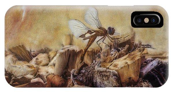 Respite Of The Mosquito Hawk IPhone Case