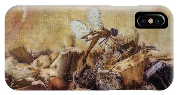 Respite Of The Mosquito Hawk IPhone Case
