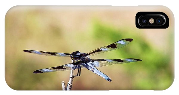 Rest Area, Dragonfly On A Branch IPhone Case