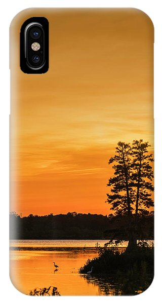Bald Cypress iPhone Case - Restful Night by Marvin Spates