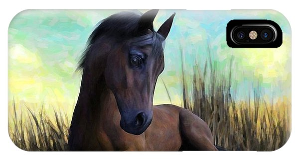 iPhone Case - Resting Foal by Sandra Bauser Digital Art