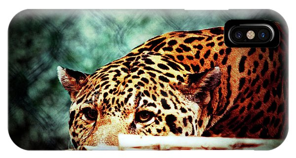 Resting Jaguar IPhone Case