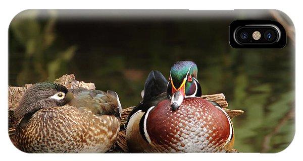 Resting Wood Ducks IPhone Case