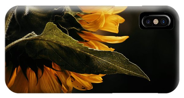 Reticent Sunflower IPhone Case