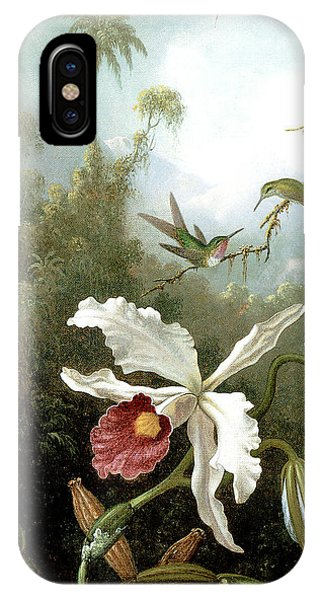 Retouched Masters - Orchid And Hummingbirds In Tropical Forest IPhone Case