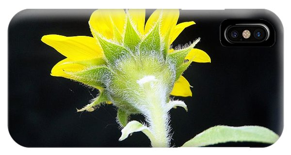 IPhone Case featuring the photograph Reverse Sunflower by Richard Ricci