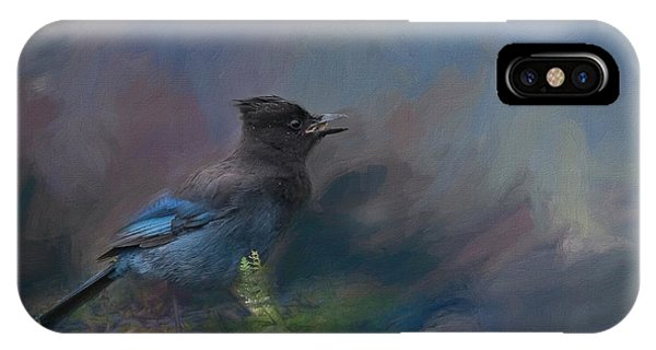 Rhapsody In Blue IPhone Case