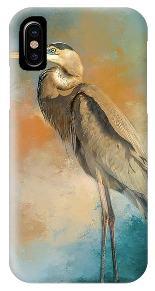 Fowl iPhone Case - Rhapsody In Blue by Marvin Spates