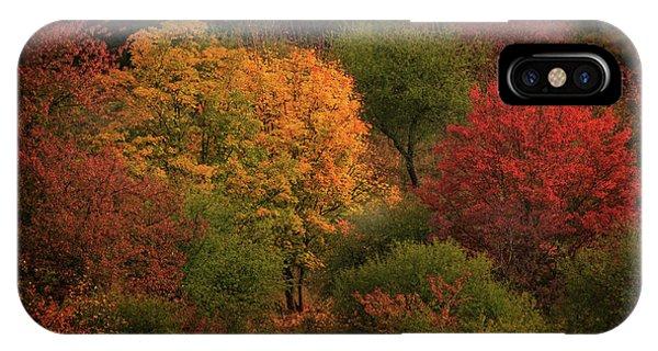Rhine Valley Autumn IPhone Case