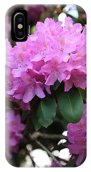 Rhododendron Beauty IPhone Case