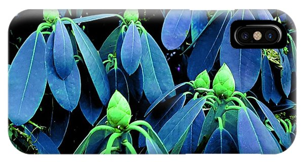 Rhododendron Buds In Spring IPhone Case
