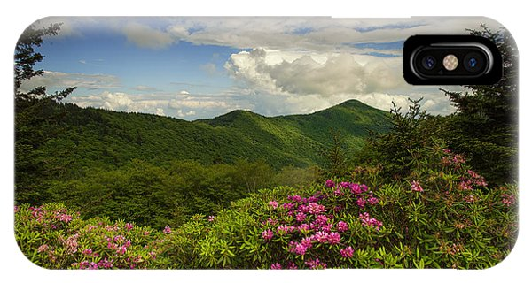 Rhododendrons On The Blue Ridge Parkway IPhone Case