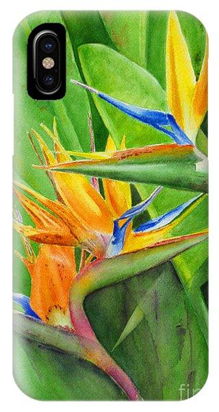 Hawaii iPhone Case - Rhonica's Garden by Karen Fleschler